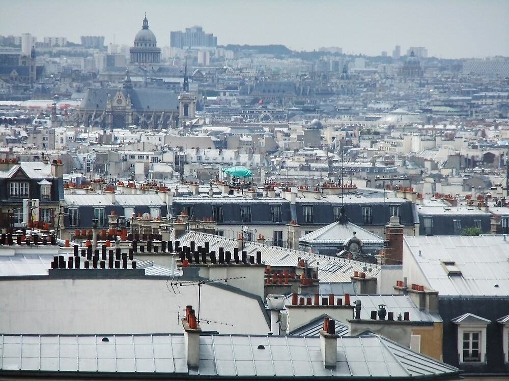 Rooftops of Paris by jlv-