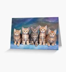 Tabby Kittens Greeting Card