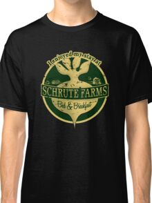 I enjoyed my stay at Schrute Farms (Green) Classic T-Shirt