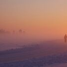 Lone skater by LadyFi