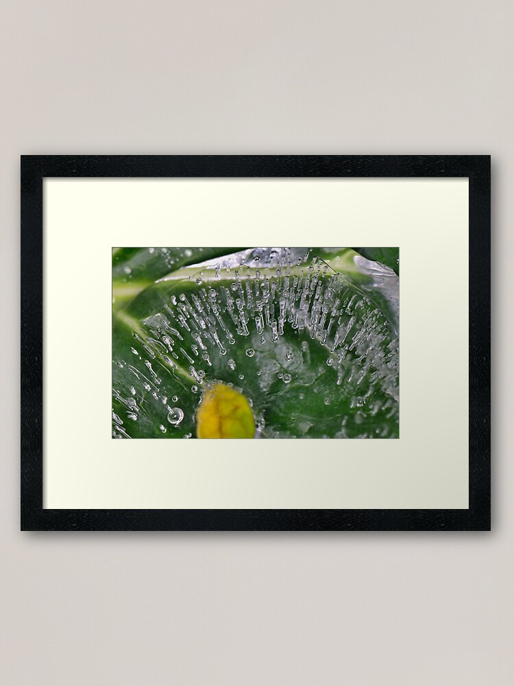Alternate view of [Red?] Bubblers Travels Framed Art Print