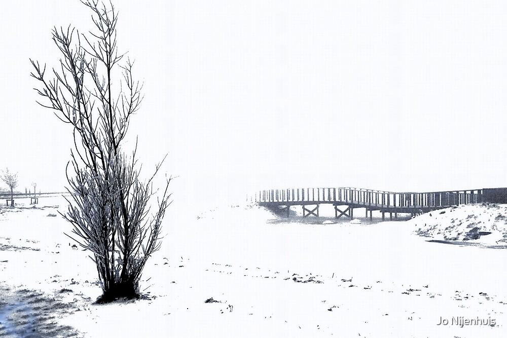 Cold Winter Morning by Jo Nijenhuis