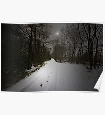 JUST A BEAUTIFUL SNOW SCENE Poster