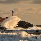 Wave Crashing at Cape Forchu by Debbie  Roberts