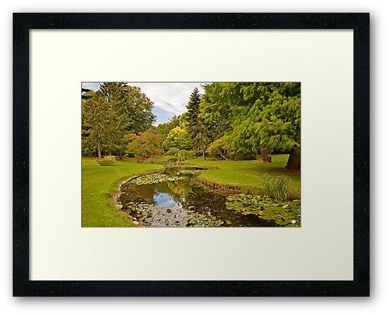 National Botanic Gardens, Dublin by Martina Fagan