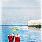 Agua de Jamaica by Lynnette Peizer