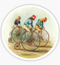 Chickens and Roosters on Big Wheel Bikes Sticker