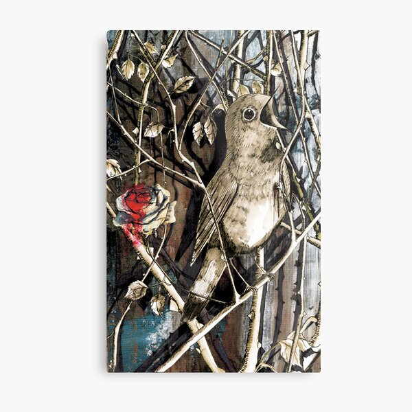 The Nightingale and the Rose Metal Print