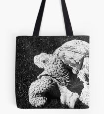 Stone Turtle Tote Bag