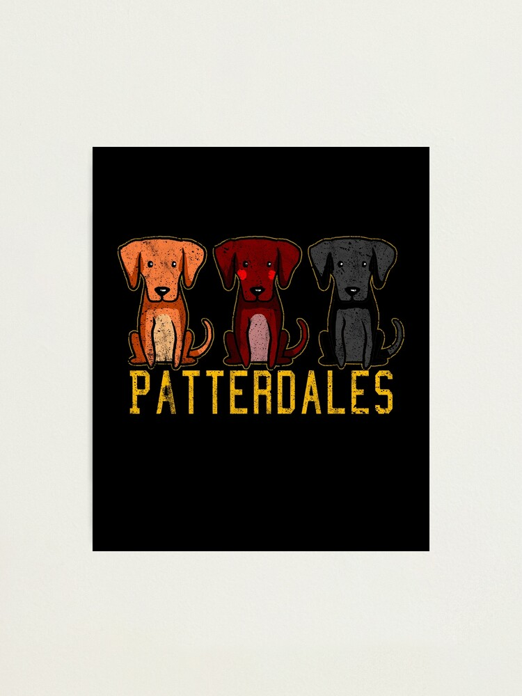 Alternate view of Black Brown Tan Patterdale Terrier Dogs Funny Faded Vintage  Photographic Print