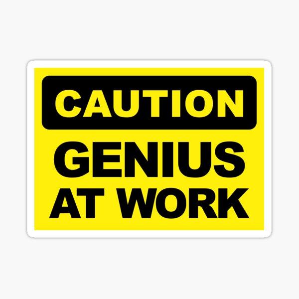Genius at work Full Colour UK Light Switch Vinyl Sticker Skin Novelty Li1121