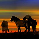 Band of Brothers by FelicityB