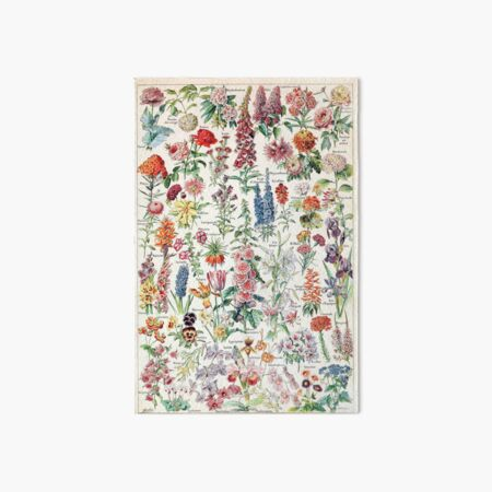 Adolphe Millot - Fleurs pour tous - French vintage poster Art Board Print