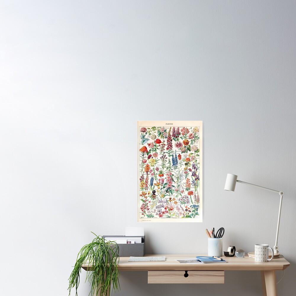 Adolphe Millot - Fleurs pour tous - French vintage poster Poster