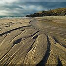 Nature's Patterns in the Sand by Winksy