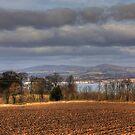 The Kingdom of Fife by Tom Gomez