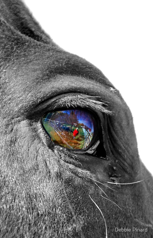 Eye See You Jessie! by Debbie Pinard
