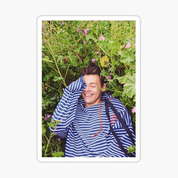 Field Harry Sticker