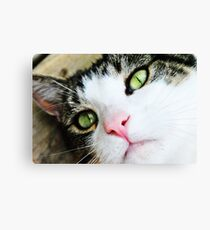 Mrs. Henry's Eye Liner Canvas Print