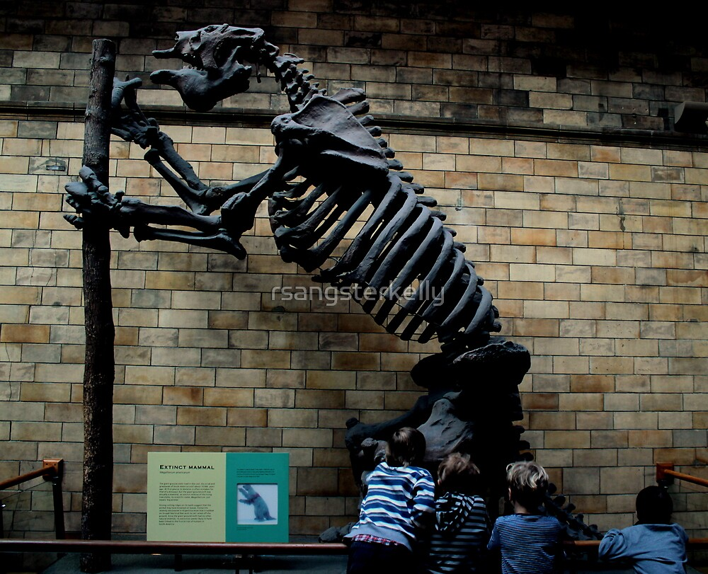 Natural History Museum - Megatherium by rsangsterkelly