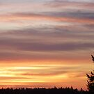 Sunset over Tacoma by MischaC
