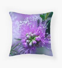 morning bottlebrush Throw Pillow