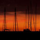 Mast at Sunrise by Sue Justice