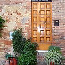 A Tuscan Door With Plants by Fara