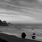 Oregon Coast Panorama by North22Gallery