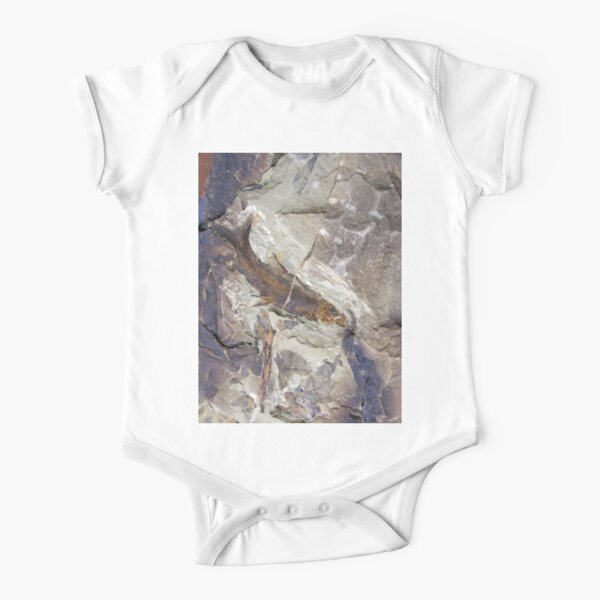 Fish Fossil by Avril Thomas Short Sleeve Baby One-Piece