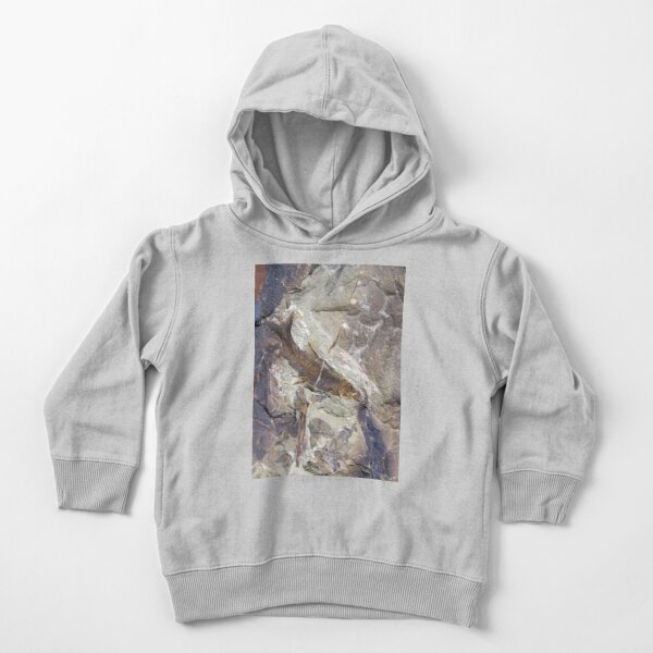 Fish Fossil by Avril Thomas Toddler Pullover Hoodie