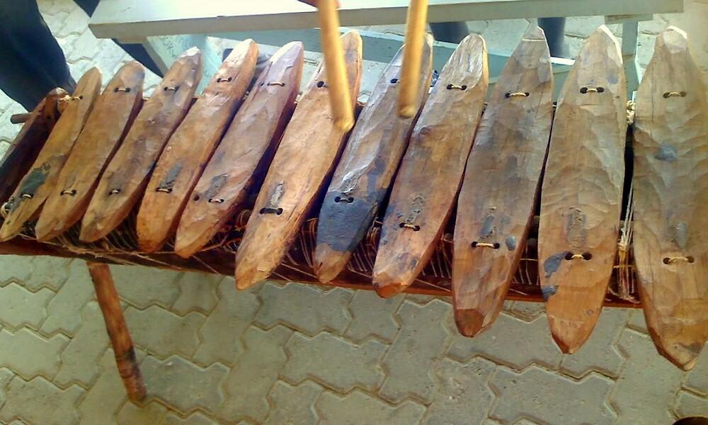 African Xylophone by Irene  van Vuuren