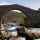 Ponte Romanica,  Castro Laboreiro, Parque Nacional da Peneda-Geres, Portugal by Andrew Jones