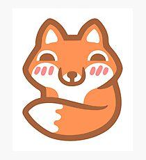 Cute Fox Photographic Print
