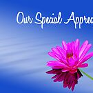 Special thanks by Franklin Lindsey