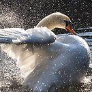 splish splash by smurfette57