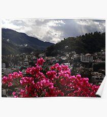 Sierra Madre With Bougainvillea - Sierra Madre Con Buganvilla Poster