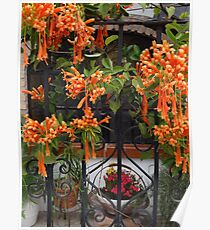 Colourful Habitation - Habitar En Colores Poster