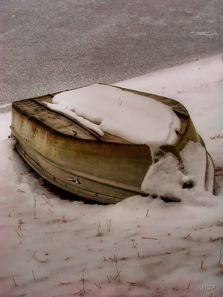 Waiting for spring thaw by vigor