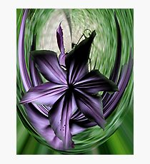 Purple Swoon Photographic Print