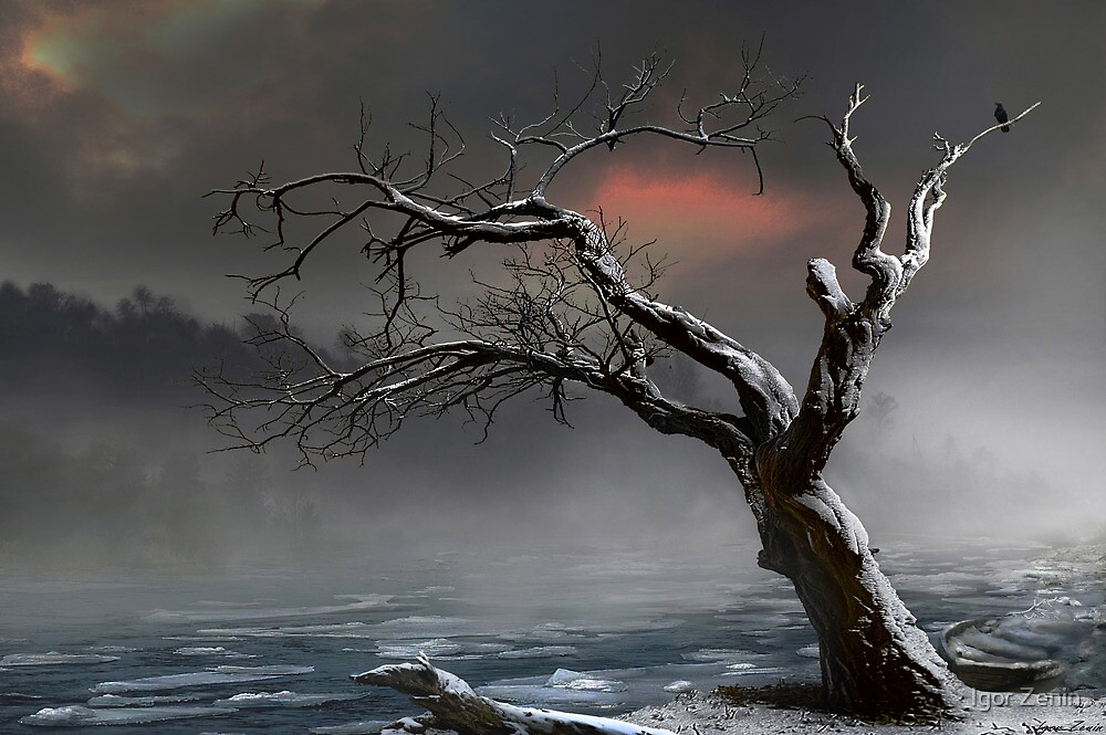 Ice Floes by Igor Zenin