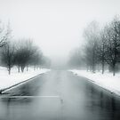 The Road Ahead is Unclear by David Lamb