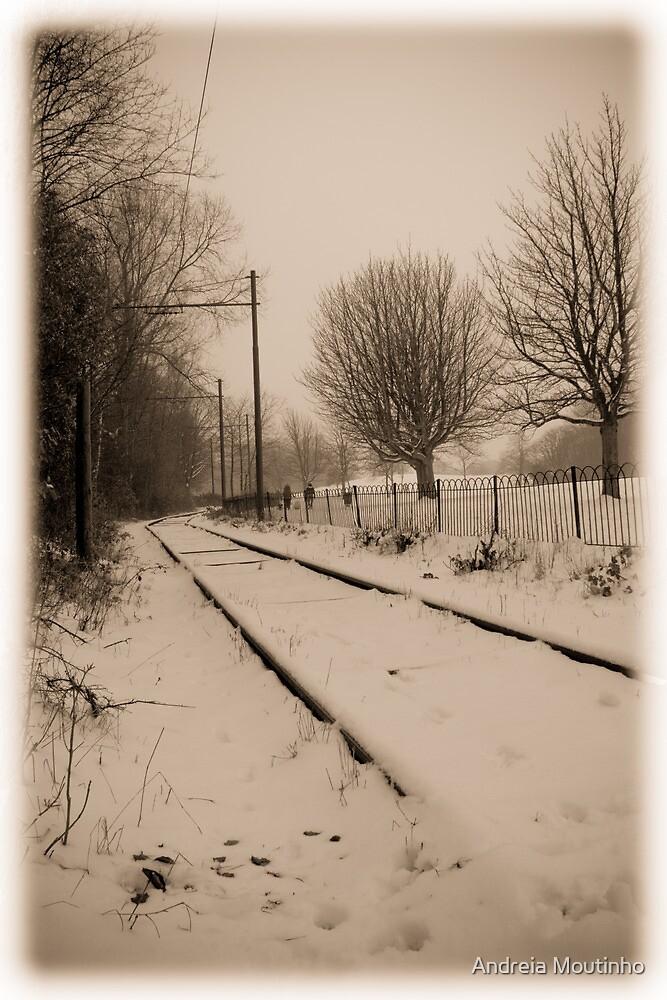 Railway to nowhere by Andreia Moutinho