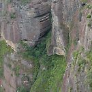 Grose Valley Cliff Face Panorama, Blue Mountains, NSW, Australia by Adrian Paul