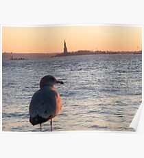 Seagull and Statue of Liberty, Hudson River Poster
