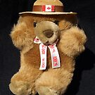 Royal Canadian Mounted Police Teddy by Bev Pascoe