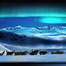 Northern Lights by Richard  Gerhard