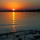 Settling Sun by Karol Livote