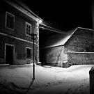 Quietness... by Mojca Savicki