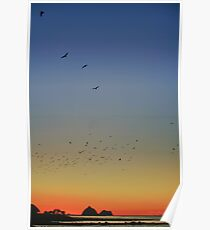 Sugar Loaf Sunset Poster